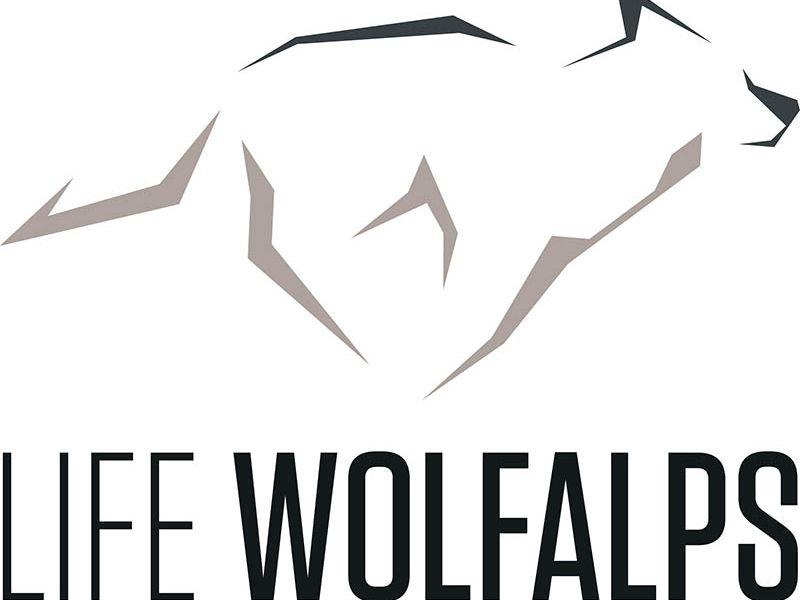 l'avventura in corso: 'Sentieri da lupi' si svolgerà con il patrocinio del progetto Life Wolfalps