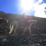 Un cavallo non si affatica a viaggiare in alta montagna? Come vi difendete dal freddo, dalla neve, dalla pioggia?  L'allenamento e la progressione in marcia fanno sì che la fatica non sia stremante. Il cavallo è un atleta. L'ozio e la noia lo affaticano molto di più, lo rendono nervoso e dispettoso.  Per freddo, neve, pioggia: 'Non c'è buono o cattivo tempo, ma buono o cattivo equipaggiamento' Lord Gilwell Baden Powell