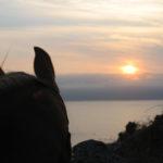 Isotta guarda il sole che va dove lei non potrà mai andare. La lascio guardare e lei sta lì. Il sole viene inghiottito dal mare. È ora di tornare indietro
