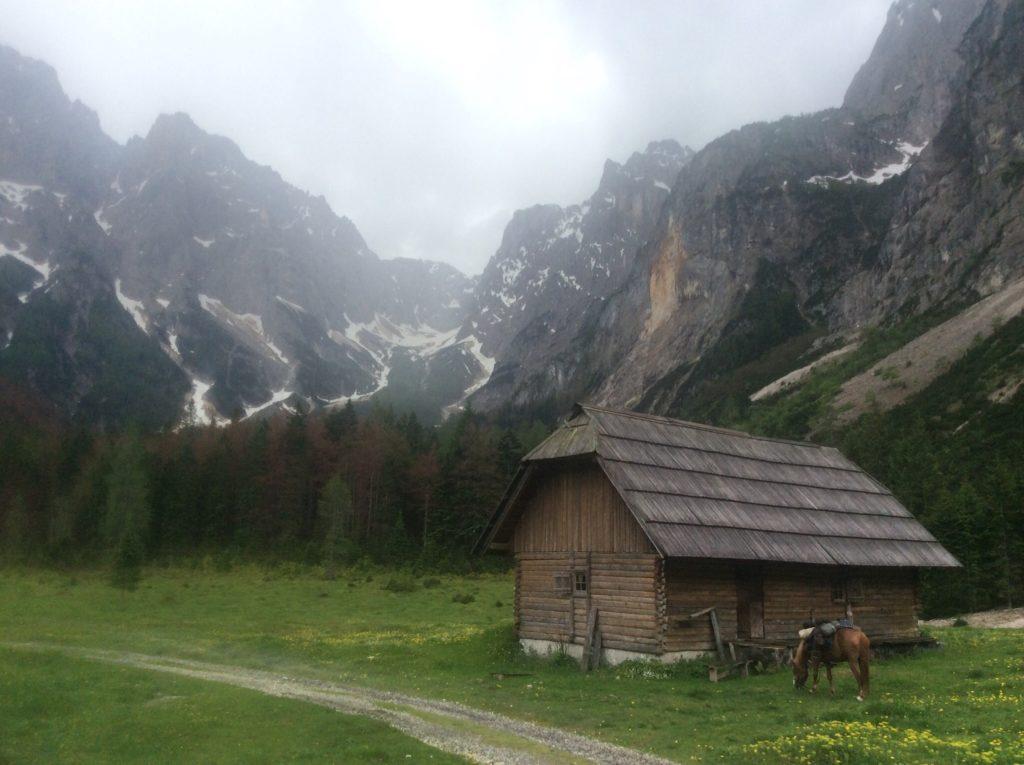 Solo montagne a forma di montagna, fiumi a forma di fiume e prati a forma di Prato. Caprioli, camosci e stambecchi. Il Triglavski Narodne Park...