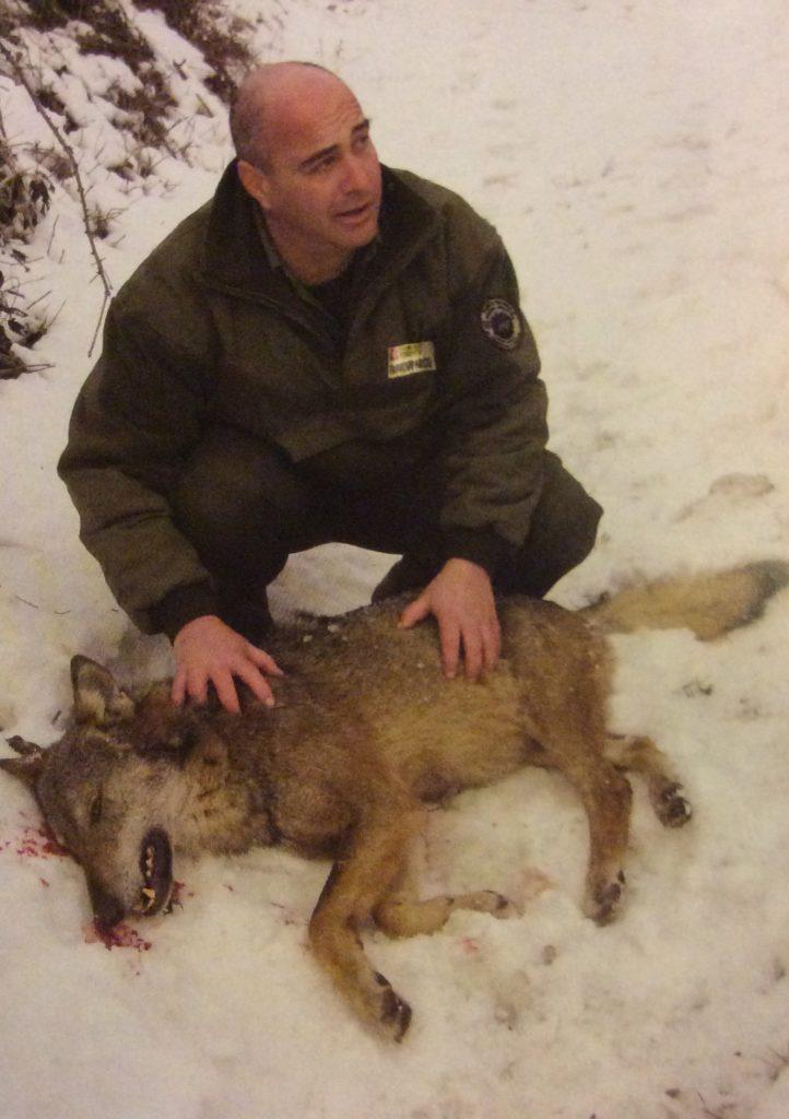 In questa foto si vede Luca così come è, tra le sue mani c'è un lupo ucciso dai bracconieri. È pubblicata sul calendario 2017 del Parco delle Alpi Cozie. Non sono stata capace di fargliene una che raccontasse così tante cose di lui e preferisco mostrarlo così.