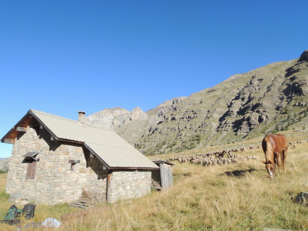 Cabane de la Moutiere