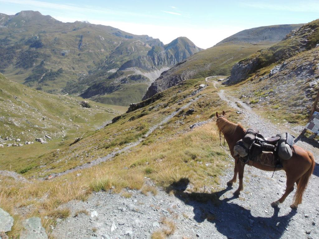 Alpe Valanghe dal colle del Mulo