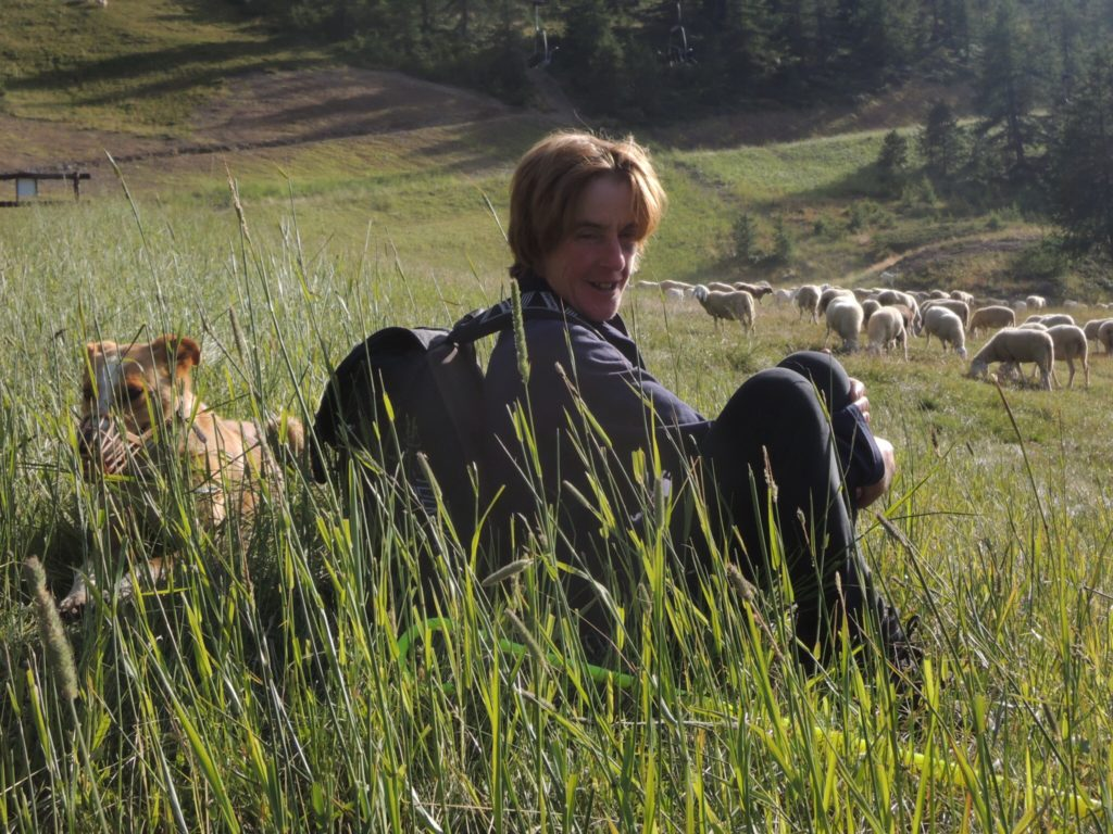 Carla Manzon con i cani che la aiutano a condurre il gregge.